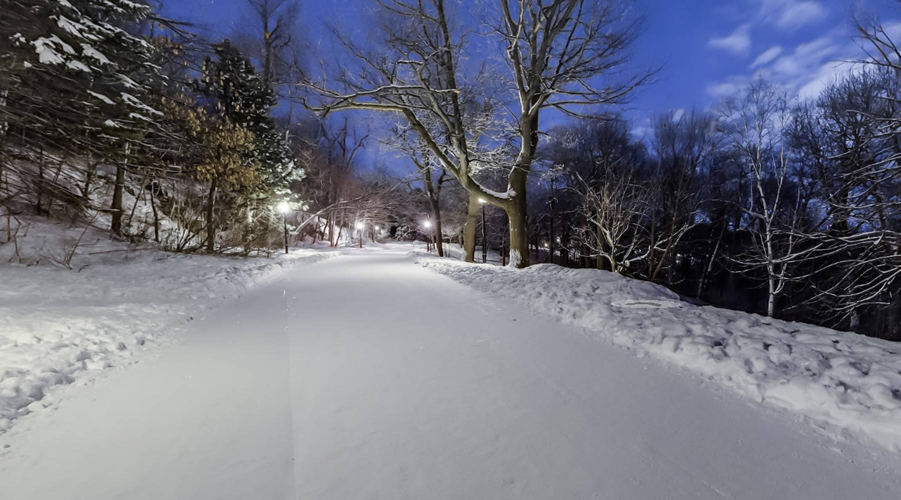 courir janvier montreal