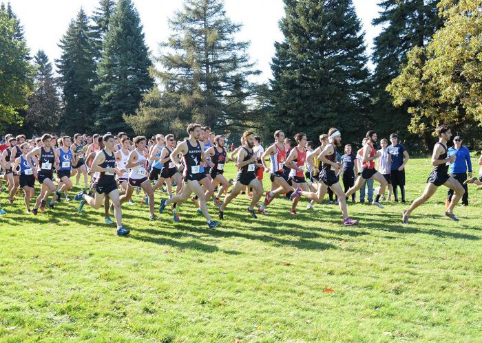 championnats provinciaux cross-country 2017