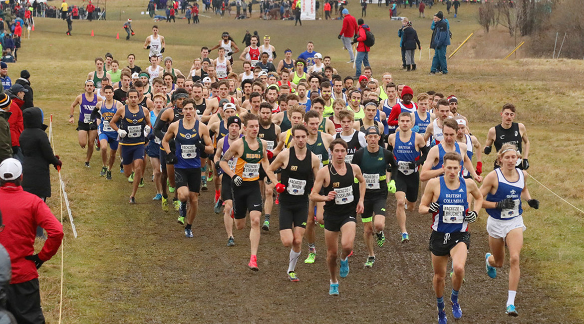 cross-country kingston 2017